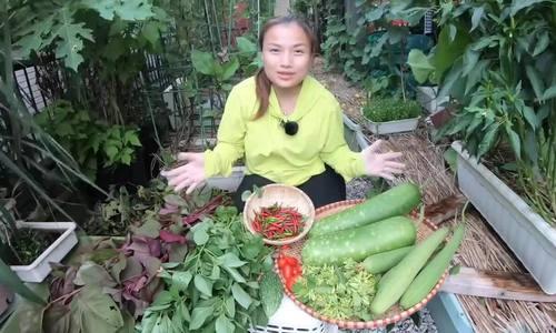 Vườn rau mùa thu của hot vlogger Quỳnh Trần JP
