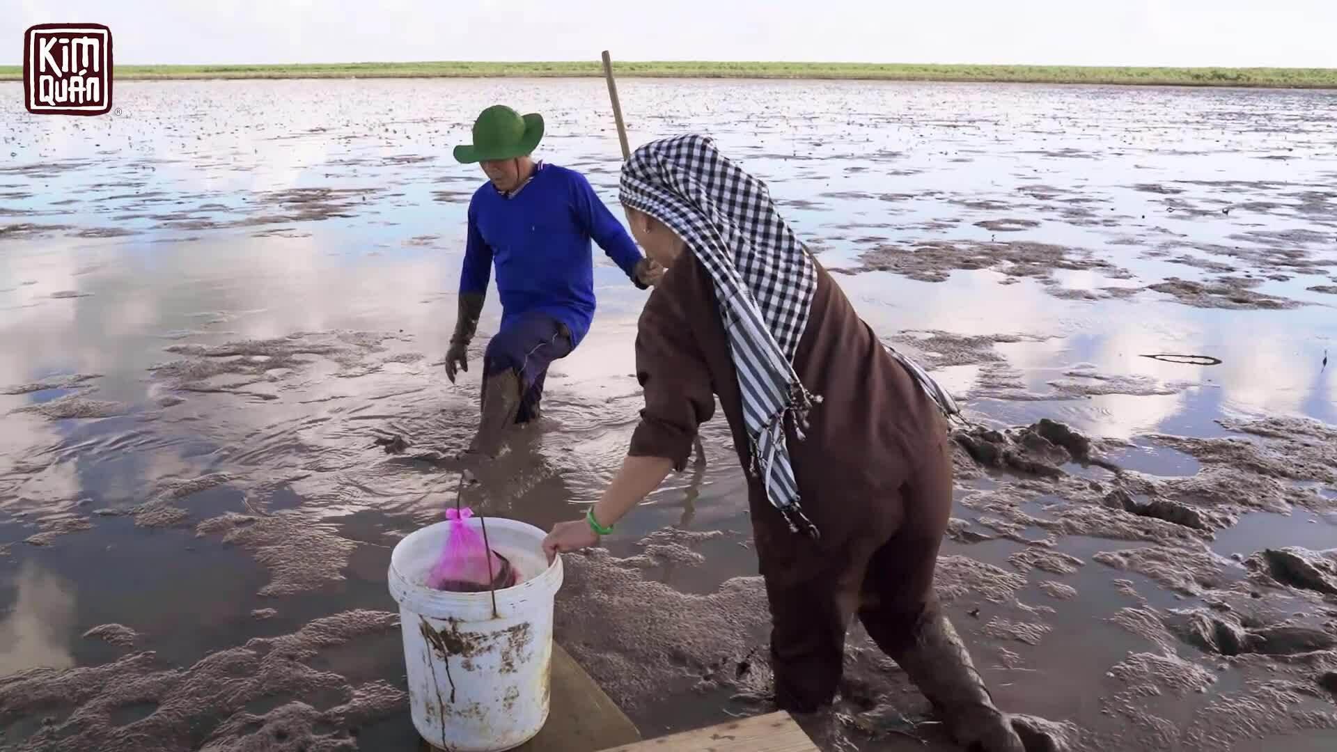 Kim Thư lội bùn ngập gối bắt tôm tích
