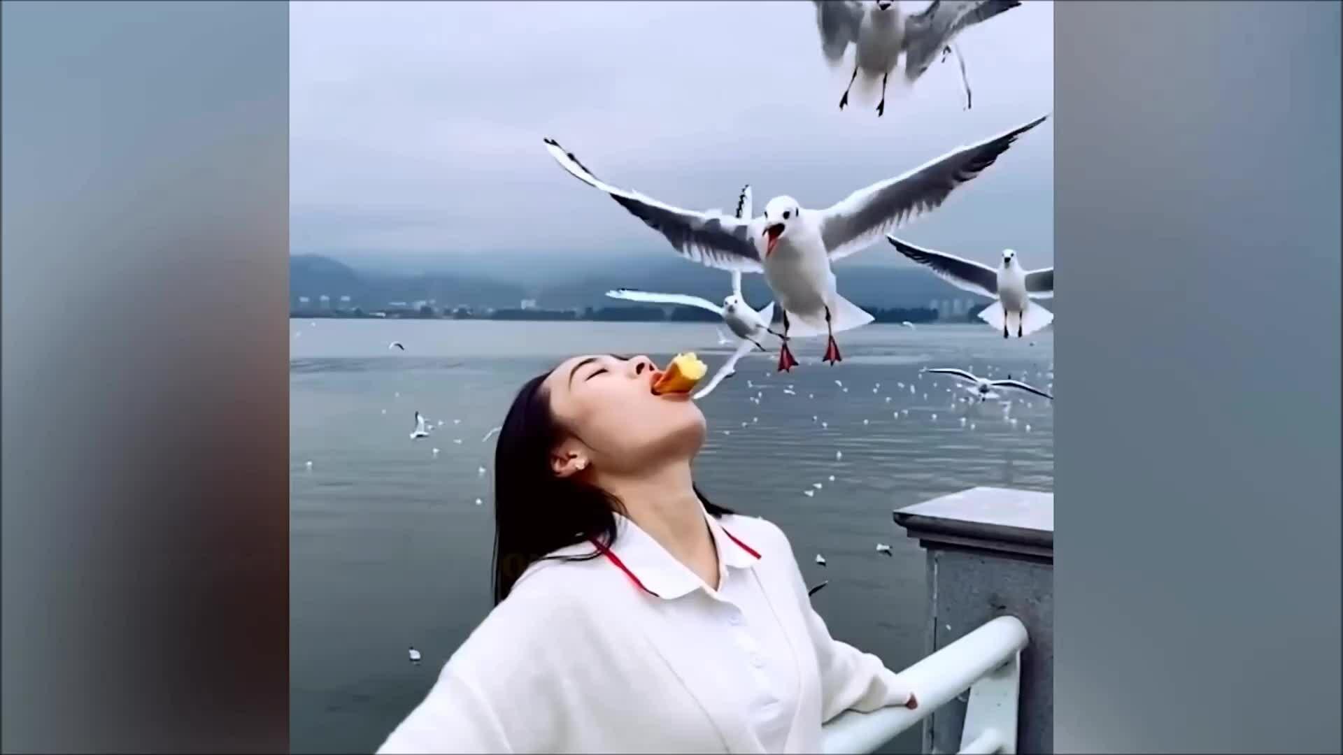 Du khách bị lên án vì cho chim ăn bằng miệng
