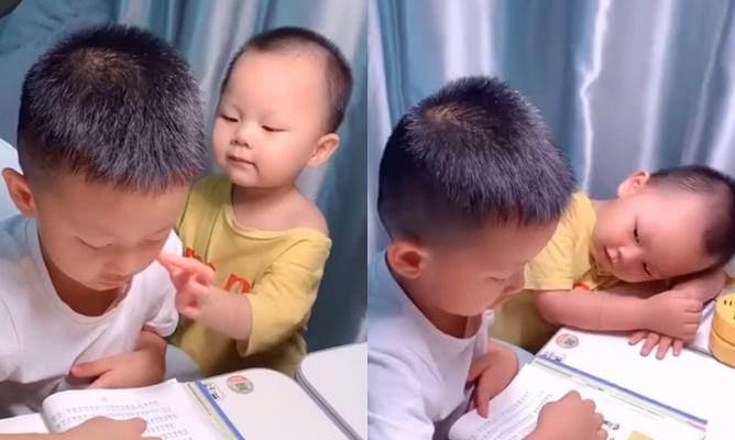 Em nhỏ 'phá đám' khi anh học bài để được quan tâm