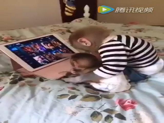 Hai con khỉ dạy nhau chơi iPad