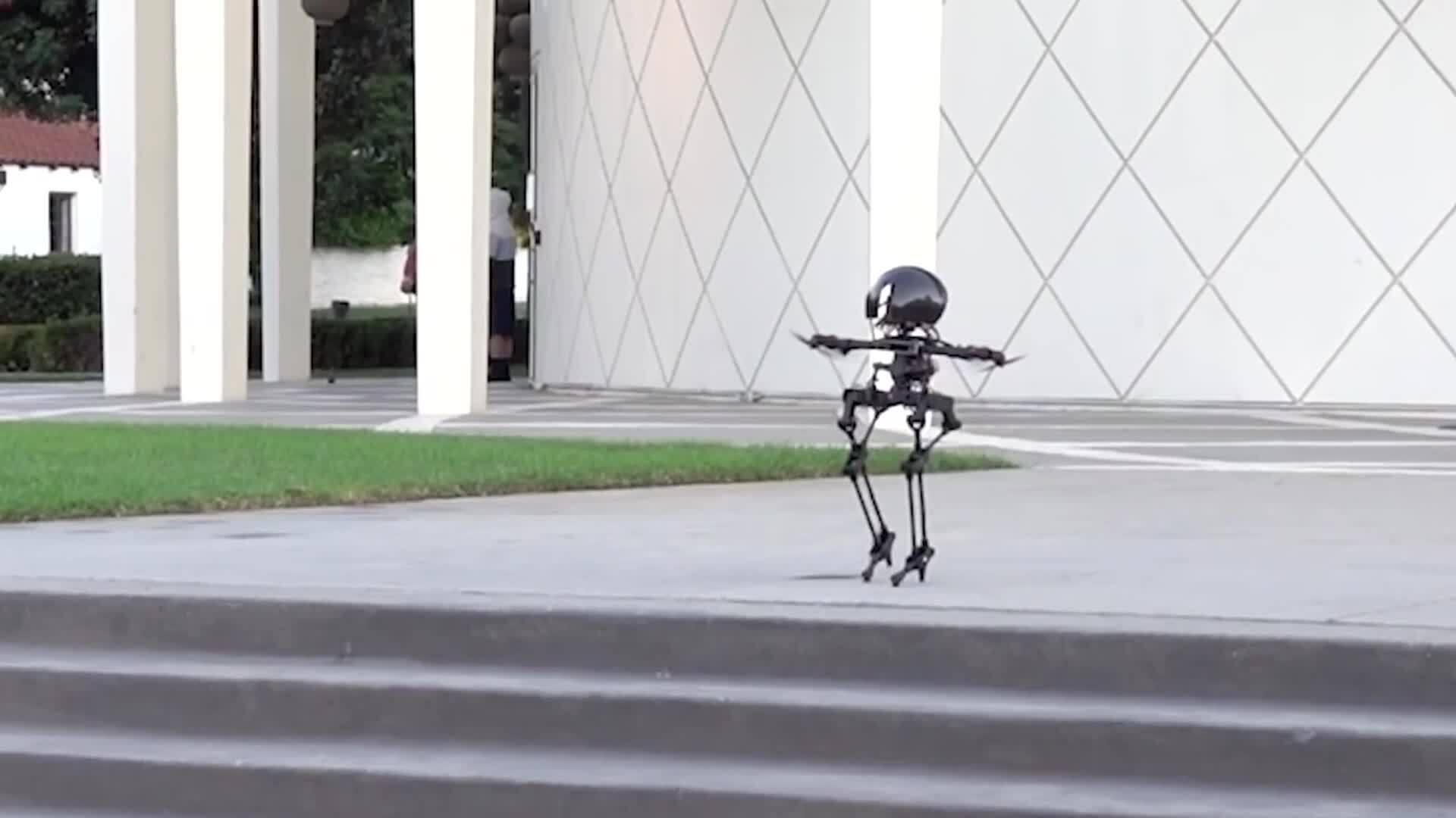Robot có thể đi bộ và bay như chim
