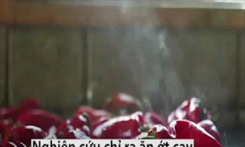 Lợi ích khi ăn ớt mỗi ngày