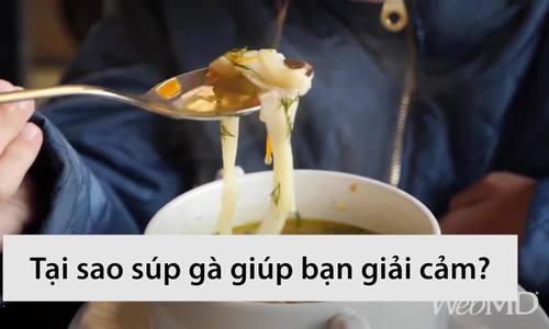 Vì sao ăn súp gà giúp giải cảm lạnh
