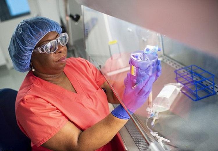 Dùng virus HIV chữa bệnh cho các em bé không có hệ miễn dịch