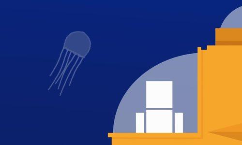Cẩn trọng bỏng sứa khi đi du lịch biển