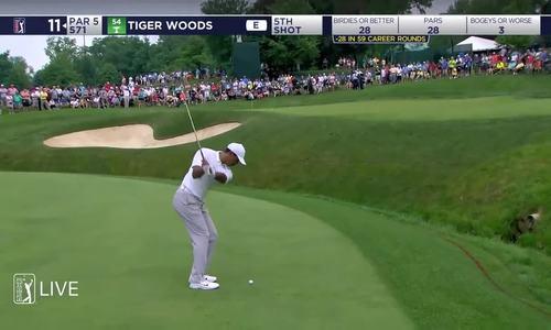 Màn trình diễn của Tiger Woods ở vòng một giải Memorial