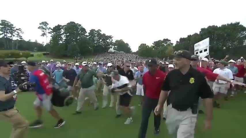 Tiger Woods vô địch TOUR Championship