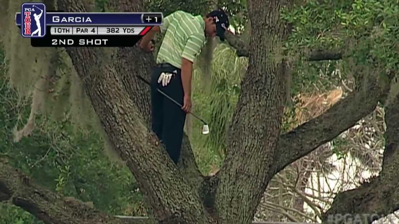 Sergio Garcia trèo lên cây đánh golf