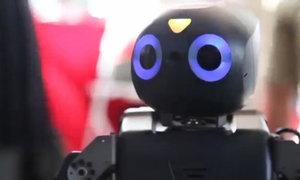 Robot đua tài cứu hộ tại Mỹ
