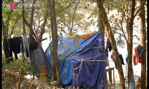 Ba người sống giữa lùm cây bên đường Hà Nội