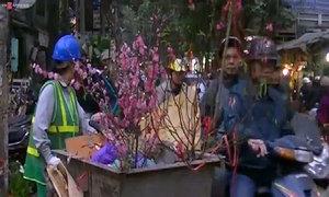 Trước giao thừa, hoa đào lại bị thu gom rác