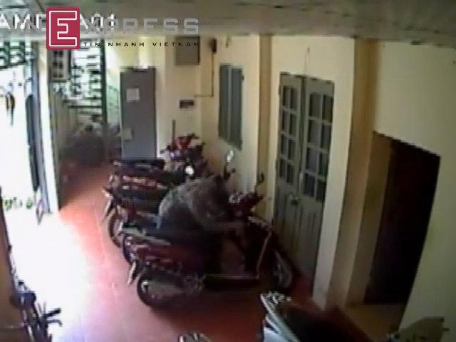 3 camera an ninh giám sát tên trộm bẻ khóa xe tay ga