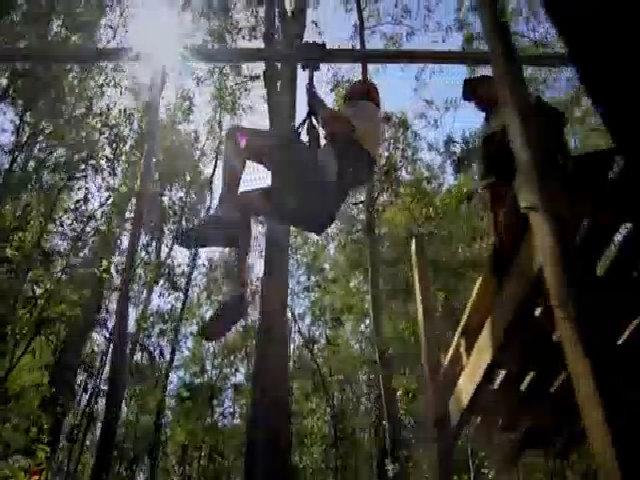 Crazy Treetop Rider - đường đu Zipline dài nhất thế giới