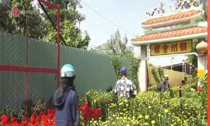 Làng hoa Sài Gòn nhộn nhịp trước Tết