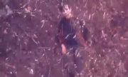 Cậu bé tự kỷ sống sót sau 4 ngày lạc trong rừng