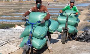 Từ Honda Chaly, chế xe chở 350 kg hàng trên cánh đồng muối