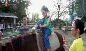 Cưỡi ngựa trị liệu cho trẻ khuyết tật, tự kỷ ở Hà Nội