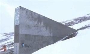 Hầm chứa hạt giống chống tận thế dưới lớp băng Bắc Cực