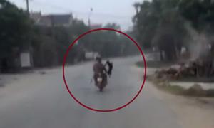 Cẩu tặc dùng thòng lọng bắt chó bị camera ghi hình