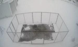 Bê tông dẫn điện làm tan băng tuyết