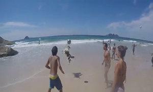 Chó chơi bóng chuyền trên bãi biển