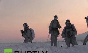 Binh sĩ Nga diễn tập cùng chó và tuần lộc giữa trời tuyết