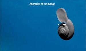 Loài sên vỗ cánh bay dưới nước như bướm
