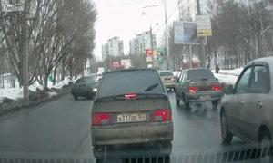 Chó chạy qua đường gây tai nạn xe hơi
