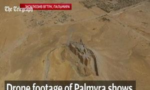 Trận chiến giữa quân đội Syria và IS ở thành cổ Palmyra
