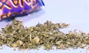 'Cỏ Mỹ' - chất gây nghiện nguy hiểm trong giới trẻ