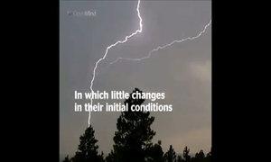 Bướm đập cánh tác động đến thời tiết thế nào
