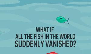 Điều gì xảy ra nếu tất cả cá trong đại dương biến mất