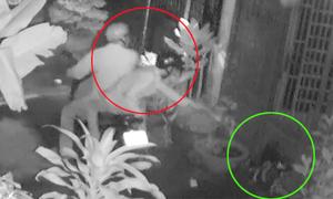 Những vụ bắn súng điện, đánh bả trộm chó gây phẫn nộ cộng đồng