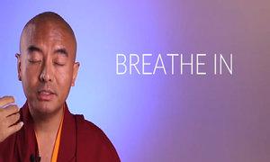 Nhà sư Tây Tạng hướng dẫn cách thiền định mọi lúc mọi nơi