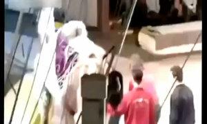 Cô gái rách quần khi cố cưỡi lạc đà