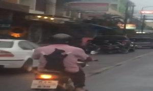 Mèo đi ngắm phố phường trên xe máy