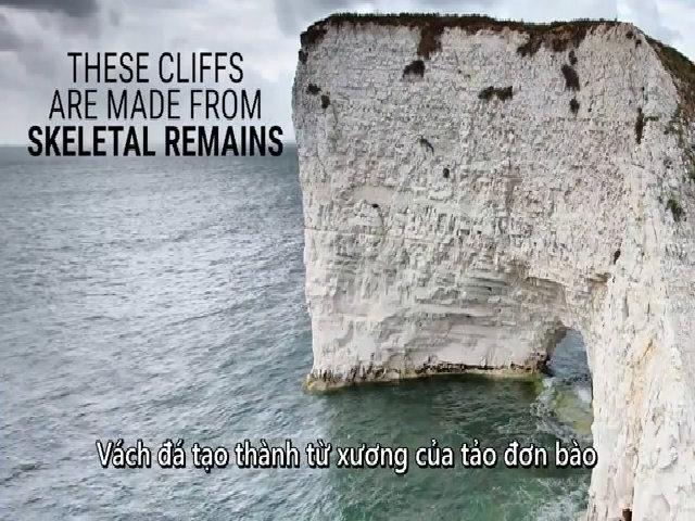 Vách đá trắng xóa tạo từ xương 100 triệu năm tuổi