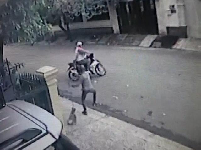 Chủ nhà bất lực đuổi theo hai tên trộm chó
