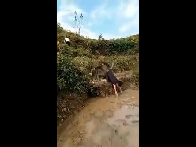 Cắm mặt xuống bùn vì bạn hậu đậu