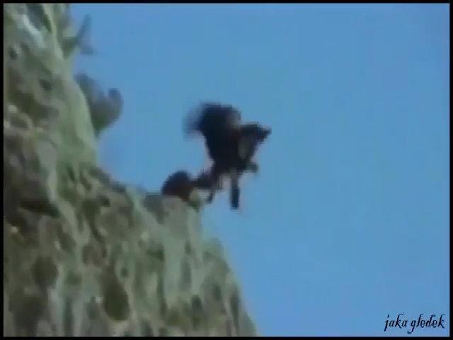 Đại bàng nhẫn tâm quăng dê xuống vách núi