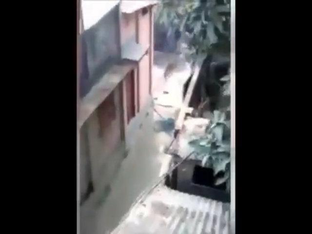 Báo hoang vùng vẫy trong vòng vây dân làng, khiến 20 người bị thương