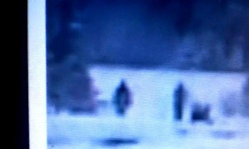 Nhóm sinh vật nghi người tuyết xuất hiện ở Mỹ