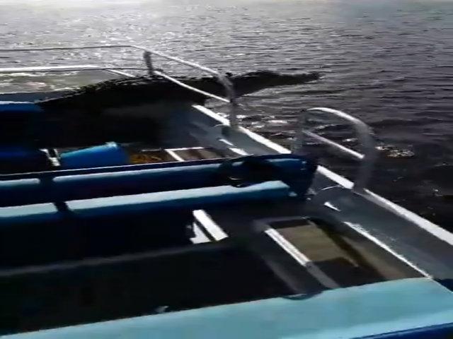 Cá sấu bất ngờ lao lên thuyền khiến cặp đôi hoảng hốt