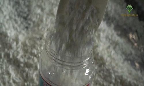 Vất vả nghề làm bột sắn dây ở Đông Triều