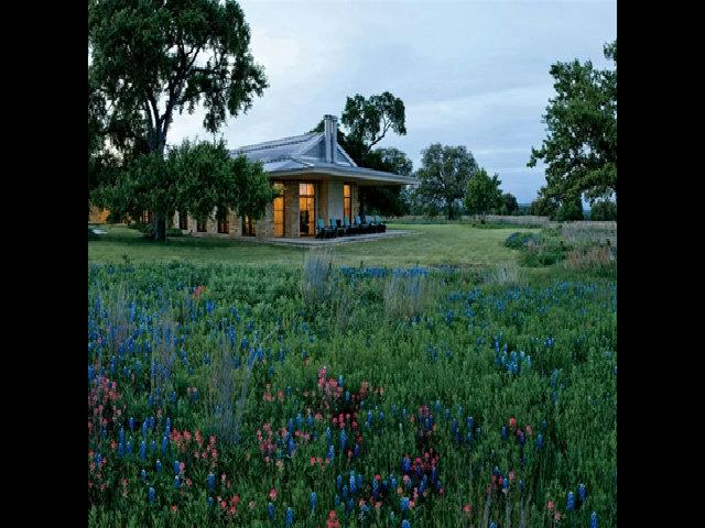 Trang trại nhà Bush