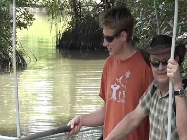Khách Tây mạo hiểm câu cá sấu ở Sài Gòn