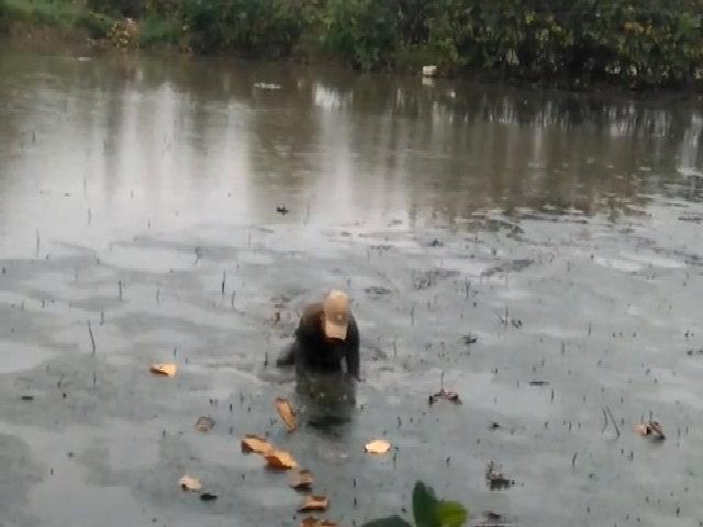 Hai cao thủ thọc tay xuống bùn sâu bắt lịch ở Sài Gòn
