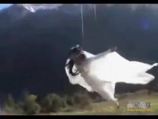 'Cô Cô' Lưu Diệc Phi nhí nhảnh trong hậu trường phim
