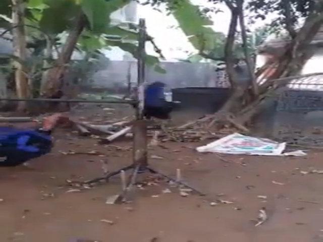 Máy tập thể dục cho gà